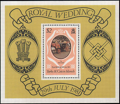 Turks and Caicos Islands #489 MNH s/s
