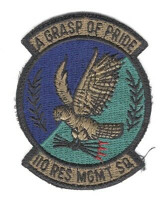 """USAF Air Force Patch:   110th Resource Managemnet Squadron - subdued, 2 1/2"""""""