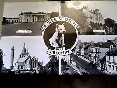 post card multi view brechin valentines posted 1963