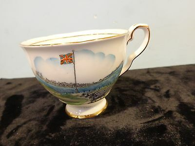 Royal Stafford bone china made in England teacup only Fort Edward Victoria Park