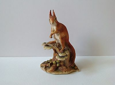 Border Fine Arts RED SQUIRREL (Style One)