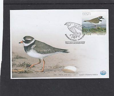 Estonia 2012 Plover bird First Day Cover FDC Tallin special h/s