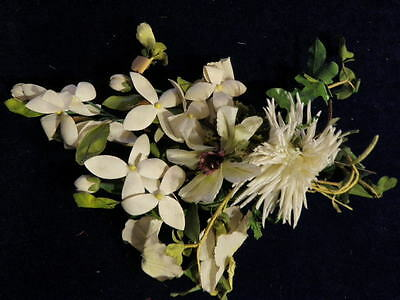 """Vintage Millinery Flower Collection 1"""" -3 1/2"""" Ivory Beige Green Shabby H1213"""