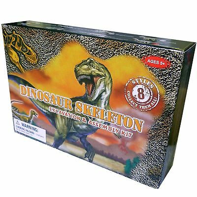 Dinosaur Excavation Kit Digging Kids