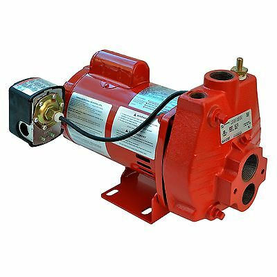 Red Lion RJC-100 3/4HP Cast Iron Convertible Jet Pump with Injector Kit | 602037