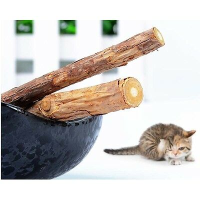 2X/Bag Cat Stick chew toy dental health kitten catnip stick pet kitty treat ATAU