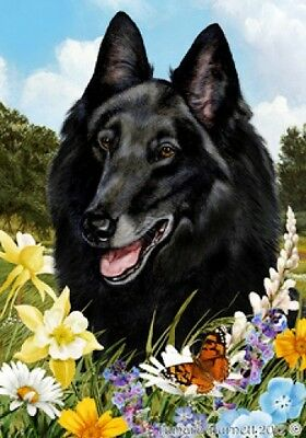 Large Pick 3 Flag Set - Belgian Sheepdog