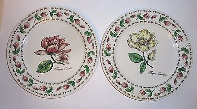 Tabletops Unlimited Botanical Gardens Pair Magnolia Dinner Plates #2
