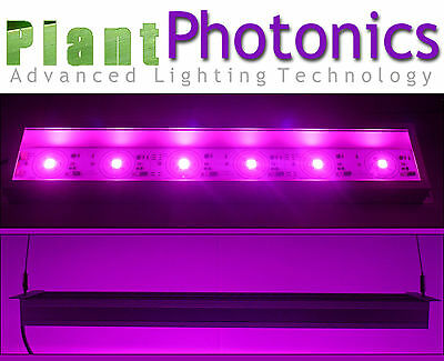 Agricultural Full Spectrum COB Light  50 Watts - Waterproof to IP65