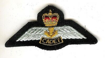 Queen's Crown Royal Canadian Air Cadet Power Pilot Wing