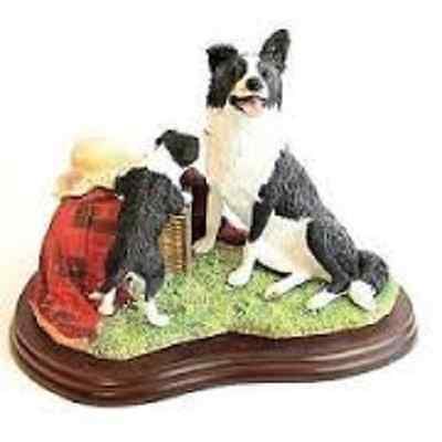 Border Fine Arts The Border Collie Collection Seeking Attention A7937 Boxed