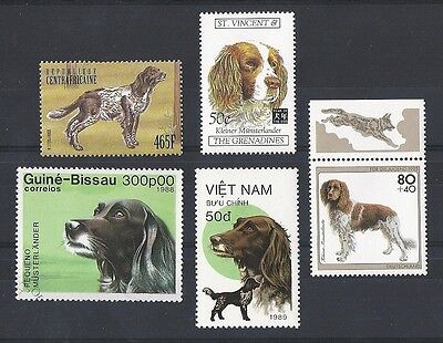 Dog Art Postage Stamp Collection SMALL MUNSTERLANDER 5 Different Head & Body MNH