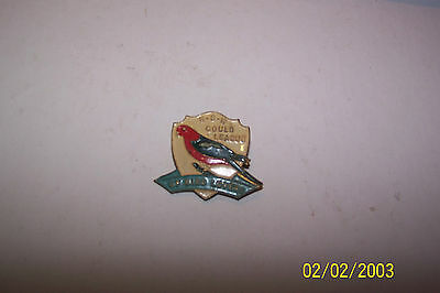 Collectable Pin Badge Bird Lovers Gould NSW King Parrot 1950