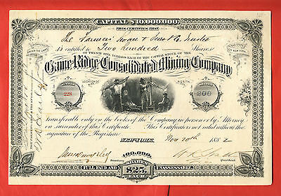 1882 Game Ridge Consolidated Mining Company New York Stock Certificate