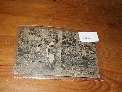 Old CEYLON  postcard our ref #56005 RUBBER TAPPING C.1910