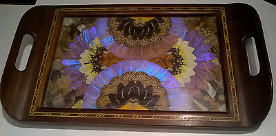 Antique Brazil Casa ABC Butterfly Wing Serving Solid Wood Serving Tray