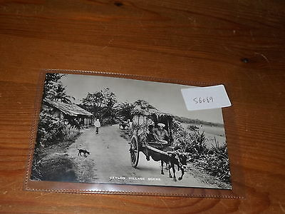Old CEYLON  postcard our ref #56069 VILLAGE SCENE