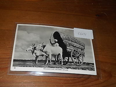 Old CEYLON  postcard our ref #56071 BULLOCK CART COLOMBO RP