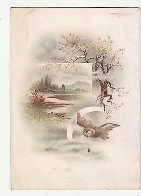 Owl Flying Tree River No Advertising Victorian Card c1880s