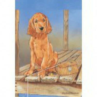 Large Indoor/Outdoor Pipsqueak Flag - Irish Setter 49890