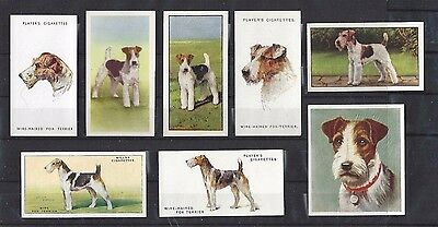 1929 - 1961 UK Dog Art Cigarette Card Collection x 9 WIRE HAIRED FOX TERRIER
