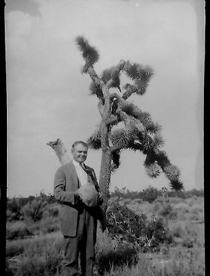 BF23 Photo Negative Belle Barchus Collection Travel SW American Desert Cactus