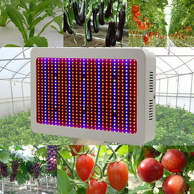 6W 600W Full Spectrum LED Plant Grow Light Hydroponics Indoor Flower Veg Lamps