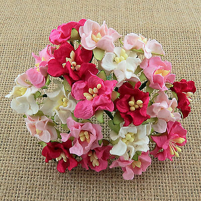 Mulberry Paper Flowers 10 x 25mm Miniature GARDENIAS Pack of Mixed PINK Shades