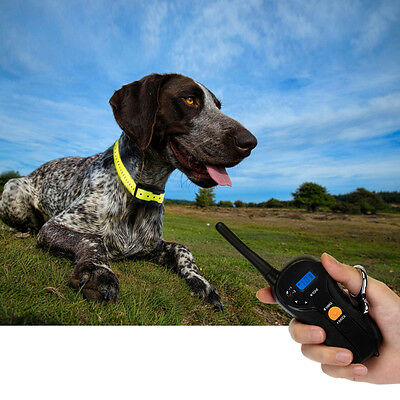 Waterproof Electric Remote Dog Training Shock Collar Rechargeable Pet Trainer