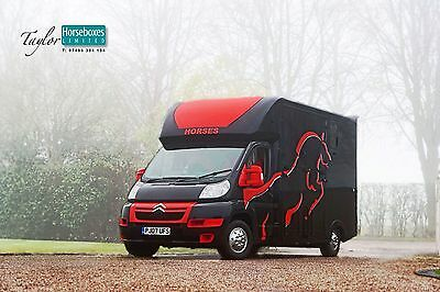 STUNNING Two Toned New Build 3.5 Ton Horsebox! LOW MILEAGE!!