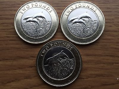 2015 Gibraltar £2 Dolphins Two Pound Coin Coin Circulated but in Good Condition