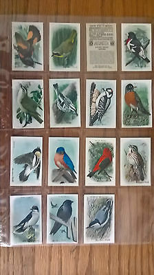 Church & Dwight trade cards: Useful Birds of America 9th Series full set sleeves