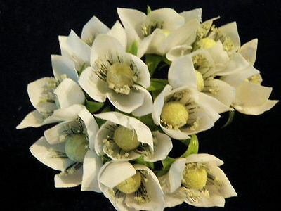 "Millinery Flower 1"" Complex White Lot of 12 for Hat Wedding + Hair Y234"