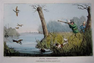 FOWL SHOOTING  GENUINE AQUATINT BY HENRY ALKEN ORIGINAL HAND COLOUR  c1825