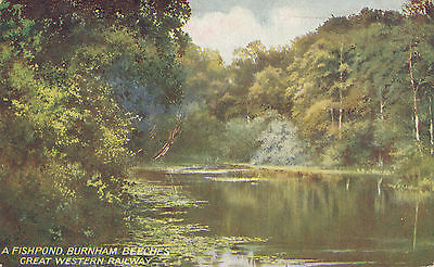 Great Western Railway official pc A Fishpond, Burnham Beeches Series 5