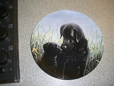 A Word In Your Ear   -Black Labradors -Collection-By John Silver -8Ins Plate