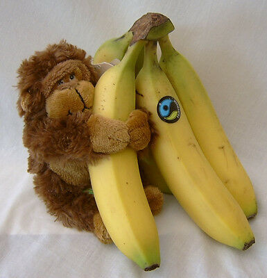 Plush Soft Toy Brown Monkey Gorilla Ape Chimp Chimpanzee 6522