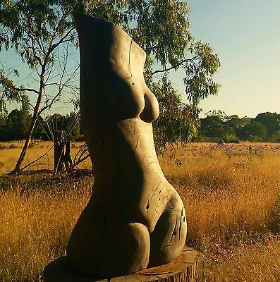 Redgum Sculpture Nude female torso By Jon Dixon Lyons Sculpture Park art studio