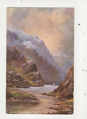 Norway The Hardanger Fjord [Tuck 7394] 1907 Postcard 789a