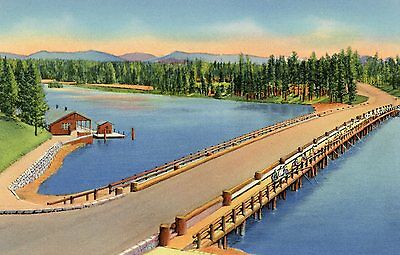 "Yellowstone National Park""fishing Bridge Over Yellowstone River"" Unused Postcard"