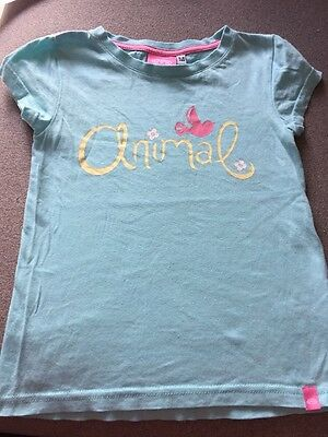 Animal Girls Aqua Blue T-shirt With Yellow Logo And Pink Flower Age 5-6