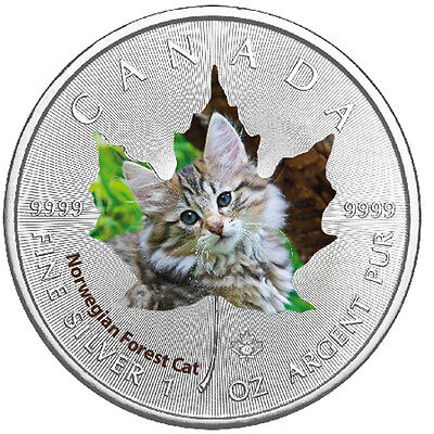 1 Oz Silber Maple Leaf Farbe 2017  Cute Kittens Norwegian Forest Cat Katzen Kana