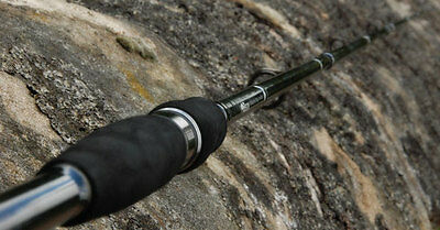 Bison 5 Section Travel Spinning Rod 10-60 Gram, Salmon Trout Sea Fishing Rod