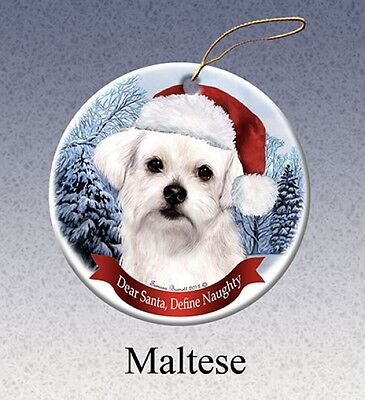 Dear Santa Define Naughty Ornament - Maltese HO175