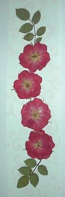 Bookmark - Handmade with Real Pressed Flowers & Leaves - Four Red Roses