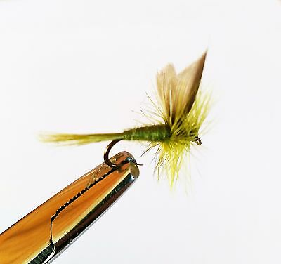 6 Olive Dun Trout Buzzers Trout Lures  Dry Fly Fishing Trout Flies