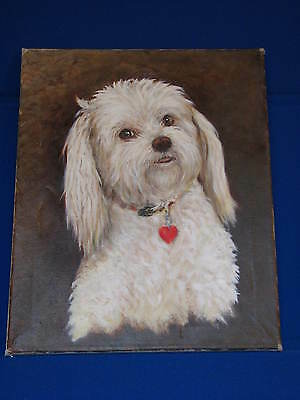 Painting White Dog Westie Maltese Small Original Portrait Art Canvas OOAK Owner