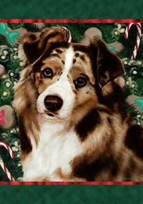 Garden Indoor/Outdoor Holiday Flag - Red Merle Australian Shepherd 142021