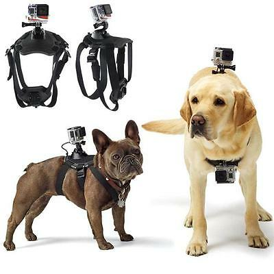 Dog Harness Chest Mount Accessories Kit for HERO & Sony Action Cam Cameras