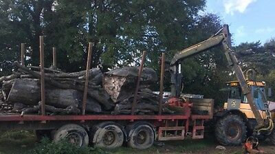 Forestry Timber Crane Trailer For Tractor